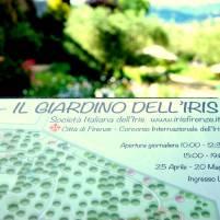 Giardino iris (3)