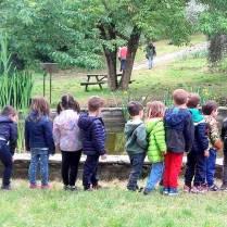 Giardino-iris scuole