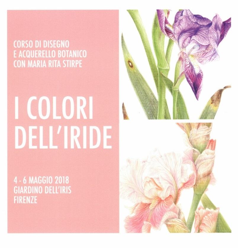I Colori dell'Iride – Corso di disegno e acquerello botanico con Maria Rita Stirpe