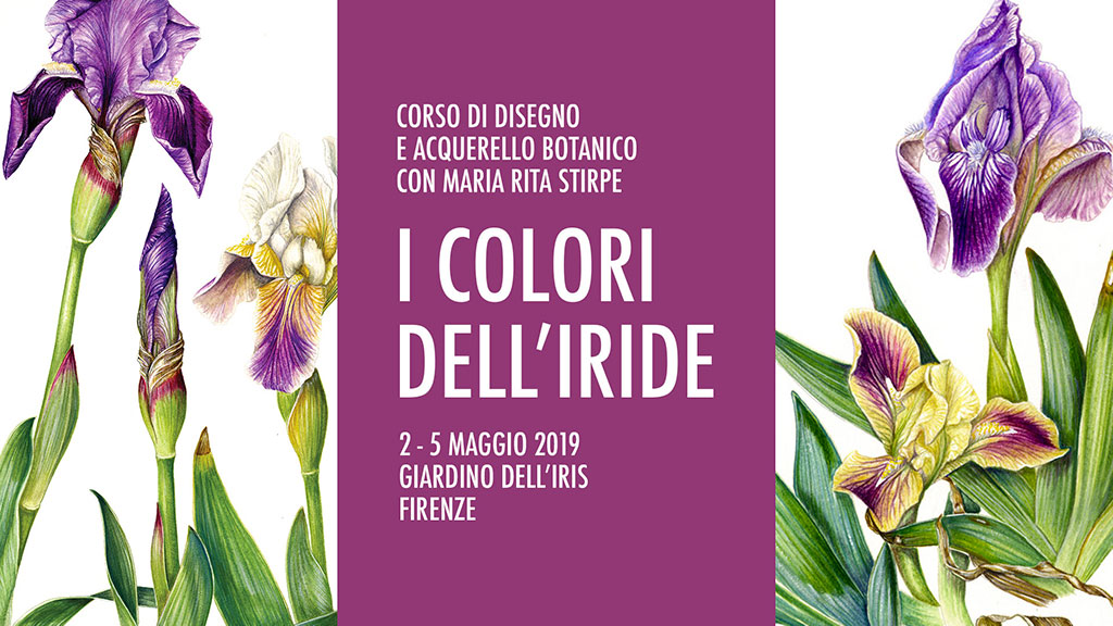 """""""I Colori dell'Iride"""" – Corso di disegno e acquerello botanico"""
