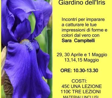 """""""Dal fiore allo schizzo"""" – Corso a tema botanico"""