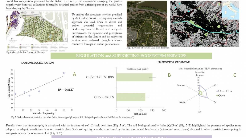 4° World Congress on Agroforestry, Montpellier 2019