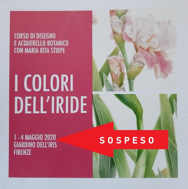 """SOSPESO il Corso di disegno e acquerello botanico con Maria Rita Stirpe """"I Colori dell'Iride"""""""